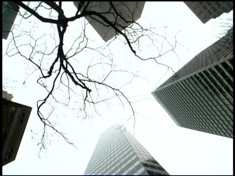low angle view of buildings in san francisco, california - meno di 10 secondi video stock e b–roll