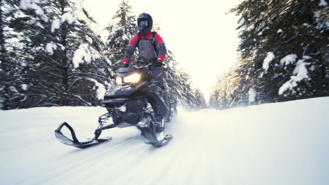 Low angle view of man riding snowmobile on forest trail / Island Park, Idaho, United States