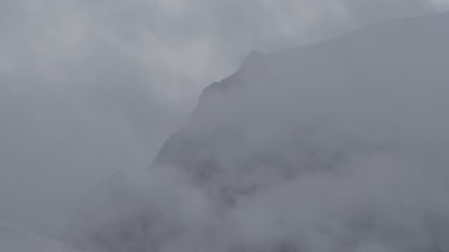 vídeos de stock, filmes e b-roll de low angle view of mountain peak surrounded by mist in forest against sky - british columbia, bella coola - low angle view