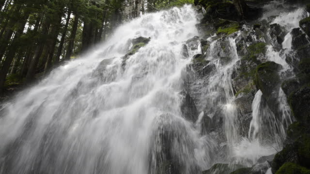 Low angle view of Ramona Falls at Mt. Hood National forest