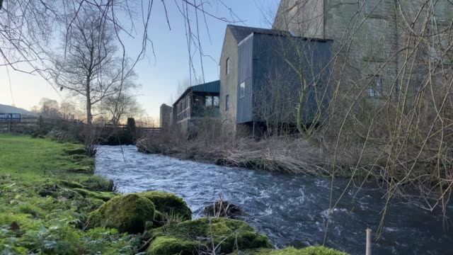 low angle view of river, caudwells mill and moss, grade ii listed historic water power mill, in winter, rowsley, derbyshire, england, united kingdom, europe - bare tree stock videos & royalty-free footage