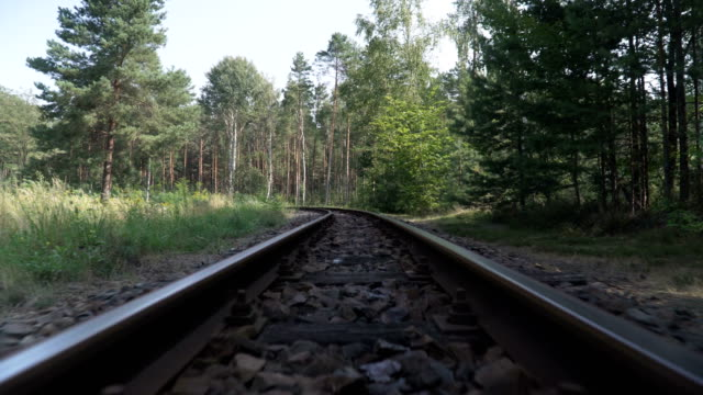 low angle view: walking along railway in forest of germany - railway track stock videos & royalty-free footage