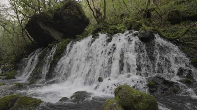 low angle, waterfall in akita - 秋田県点の映像素材/bロール