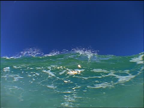 vidéos et rushes de low angle wave crashing over camera / hawaii - low angle view
