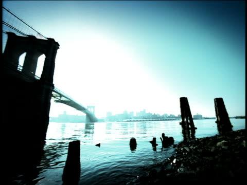 vídeos de stock, filmes e b-roll de blue high contrast low angle wide shot pan from riverbank of east river to brooklyn bridge / new york city - superexposto