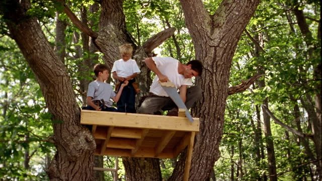 low angle wide shot man and two boys hammering + sawing on platform in tree - sohn stock-videos und b-roll-filmmaterial