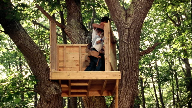 Low angle wide shot man and two boys standing third wall of treehouse up on platform in tree