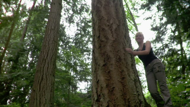 low angle wide shot of teenage girl leaning against tree - tree hugging stock videos & royalty-free footage