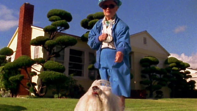 vídeos de stock, filmes e b-roll de low angle wide shot senior woman in blue outfit with small white dog on leash - eccentric