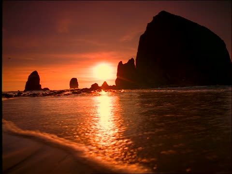 low angle wide shot surf washes up on beach as silhouetted bird flies over rock formations in background / sunset / oregon - surf rock stock videos & royalty-free footage