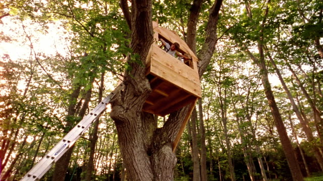vídeos de stock, filmes e b-roll de low angle wide shot two boys hammering nails into treehouse - treehouse