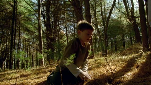 low angle young boy on his knees planting trees - 植える点の映像素材/bロール