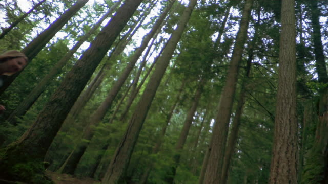 low angled canted shot of trees in forest / woman hiking past camera / pausing to look around - kelly mason videos 個影片檔及 b 捲影像