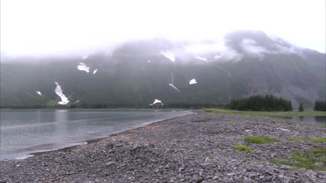 low clouds gather over snowy mountains along alaska's kenai peninsula. - kenai peninsula stock videos & royalty-free footage