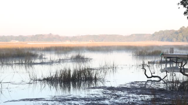 Low country marsh in fog at sunrise