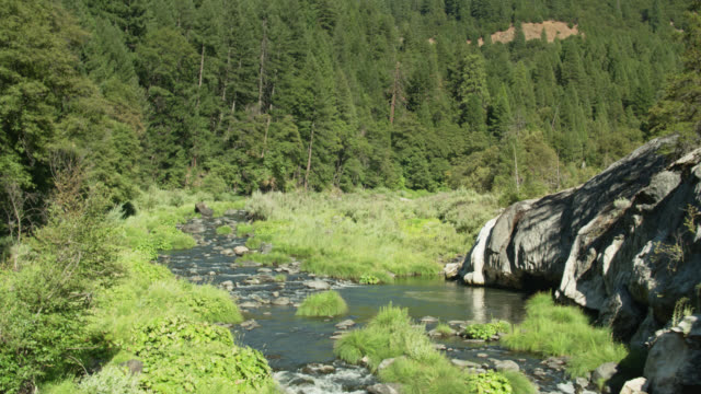 stockvideo's en b-roll-footage met lage drone vlucht over feather river in noord-californië - californian sierra nevada