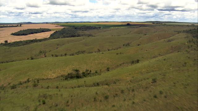 vídeos de stock, filmes e b-roll de baixa voo em gramados e campos, minas gerais-vista aérea-goiás, brasil - savana