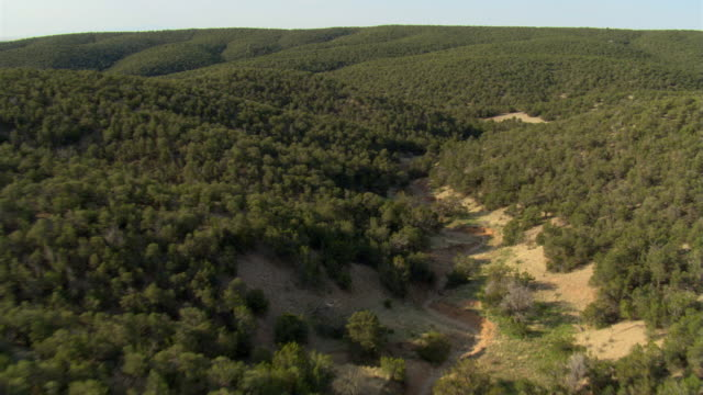 low flight over brush-covered rolling hills - shrubland stock videos & royalty-free footage