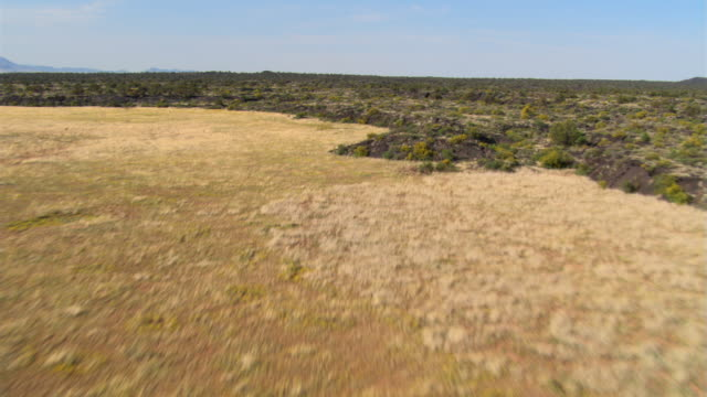 low flight over desert and rocky scrub land - shrubland stock videos & royalty-free footage