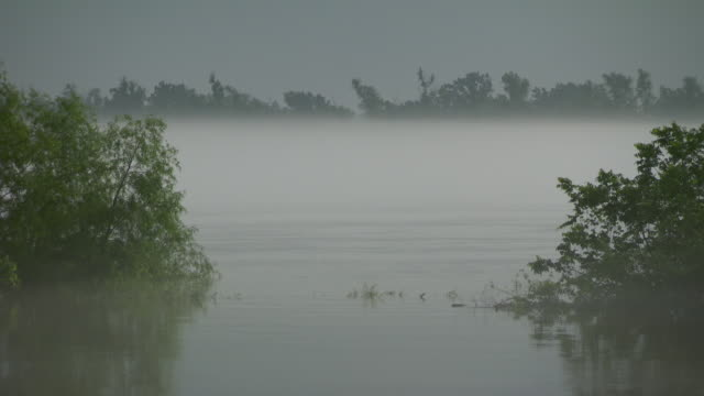 ws low mist hovers above mississippi river surface / new orleans, louisiana, united states - ミシシッピ川点の映像素材/bロール