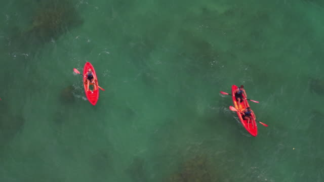 low overhead aerial shot of four friends ocean kayaking - turtle bay hawaii stock videos and b-roll footage