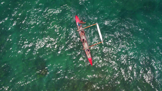 low overhead drone shot of four people in outrigger canoe - turtle bay hawaii stock videos & royalty-free footage