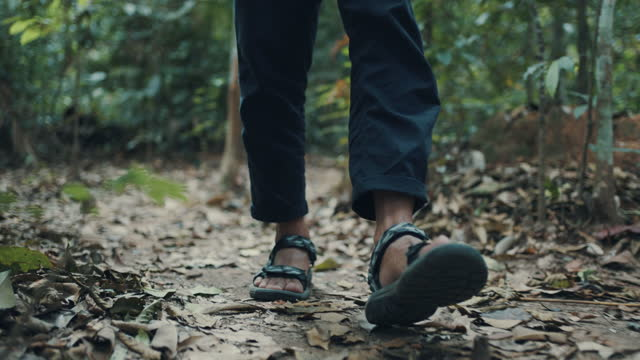 low section of a male hiker walking on path with dry leaves - tropical rainforest stock videos & royalty-free footage