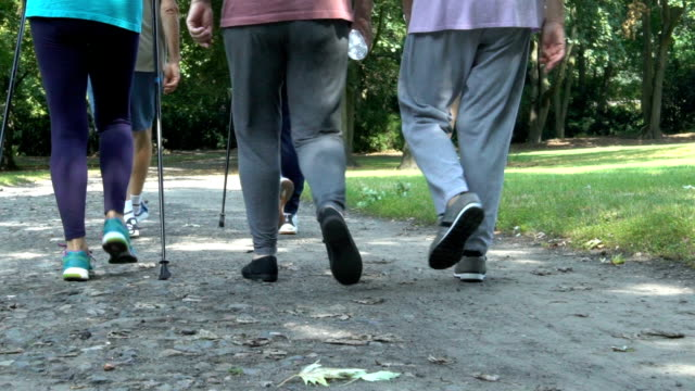 low section of fit senior people walking in park - low section stock videos & royalty-free footage