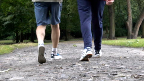 low section of senior men walking on dirt road - male friendship stock videos & royalty-free footage
