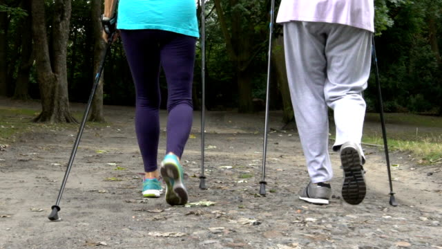 low section of senior women walking on road in park - stick plant part stock videos & royalty-free footage