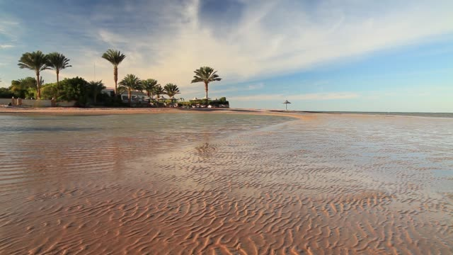low tide on the beach during sunset. egypt - hurghada stock-videos und b-roll-filmmaterial