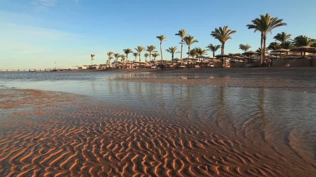 low tide on the beach during sunset. egypt - low tide stock videos & royalty-free footage