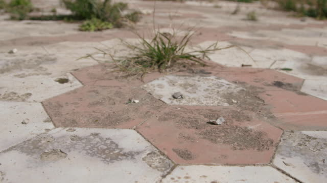 Low tracking shot across the floor tiles of the derelict Australia Hall in Pembroke.