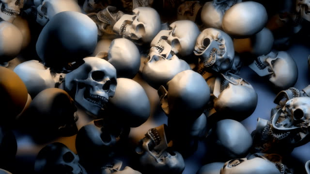 low view, lots of skulls filling the screen - skull stock videos and b-roll footage