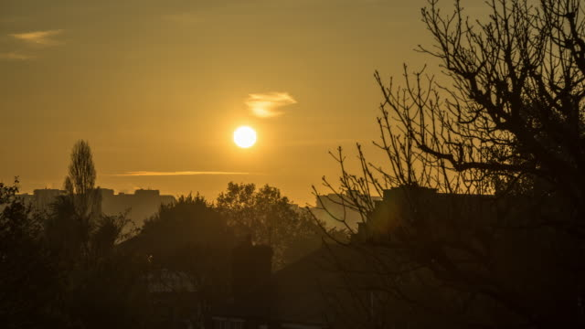 A low winter sun rises in the early morning over the silhouettes of trees and rooftops in North London
