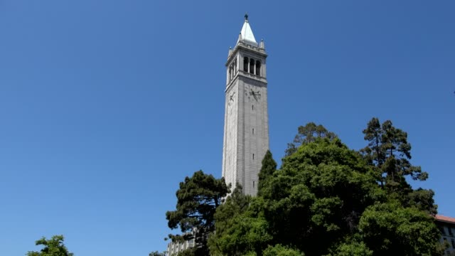 low-angle view of sather tower, aka the campanile, on the campus of uc berkeley in berkeley, california with trees in foreground against a blue sky,... - smith tower stock videos & royalty-free footage