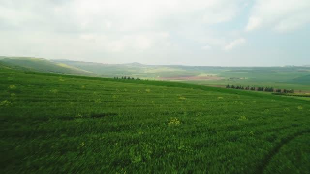 vidéos et rushes de lower galilee - valley