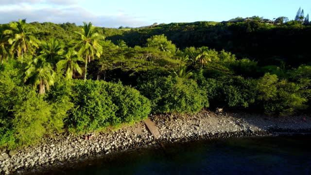 Descente vers la plage de rochers sur l'île de la côte de Maui