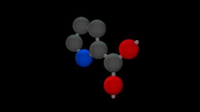 L-proline (Pro, P)