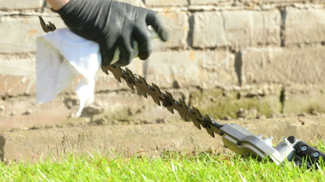 lubricating blades of hedge trimmer - ラテックス点の映像素材/bロール