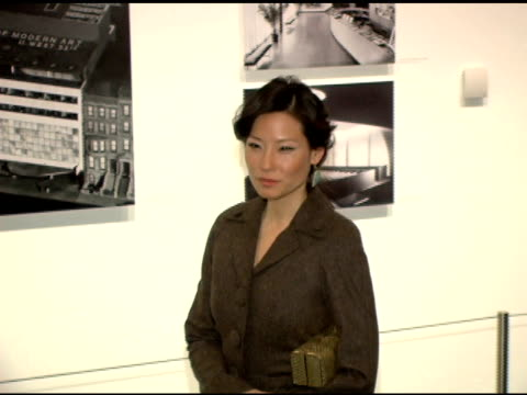 lucy liu at the '3 needles' new york premiere at the museum of modern art in new york, new york on march 18, 2006. - lucy liu stock videos & royalty-free footage