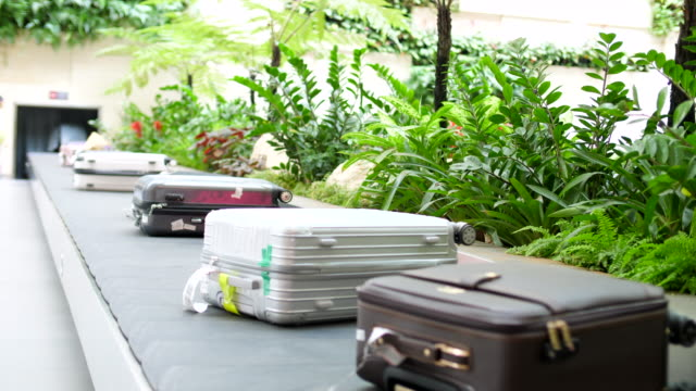 luggage belt in arrivals hall at the airport - cart stock videos & royalty-free footage