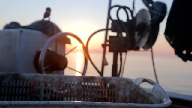 lumachine di mare pesca