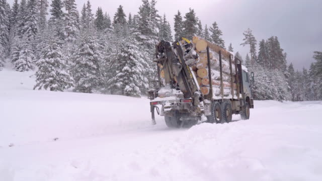 lumber industry. transportation truck driving on snow covered road, first snow falling. - snowing stock videos & royalty-free footage