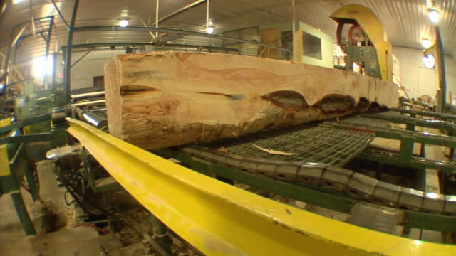 ms, pan, lumber moving on conveyors at sawmill, manistique, michigan, usa - lumberyard stock videos and b-roll footage