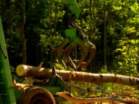 lumbering machine - 若い男性だけ点の映像素材/bロール