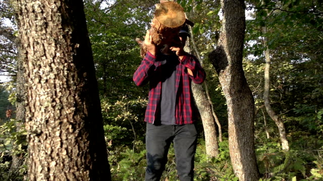vídeos y material grabado en eventos de stock de leñador llevando registro de madera - leñador