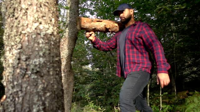 holzfäller mit holzblock - naturwald stock-videos und b-roll-filmmaterial