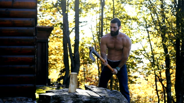 lumberjack chopping firewood in the mountain - slow mo - tagliaboschi video stock e b–roll