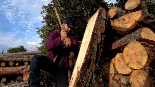 lumberjack chopping wood log - hat stock videos and b-roll footage